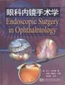 眼科内镜手术学