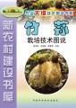竹荪栽培技术图说