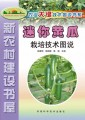 迷你黄瓜栽培技术图说
