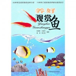 养好观赏鱼