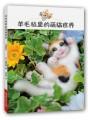 羊毛毡里的萌猫世界