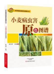 小麦病虫害原色图谱