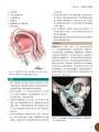 口腔颌面外科手术图解