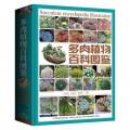 多肉植物百科图鉴